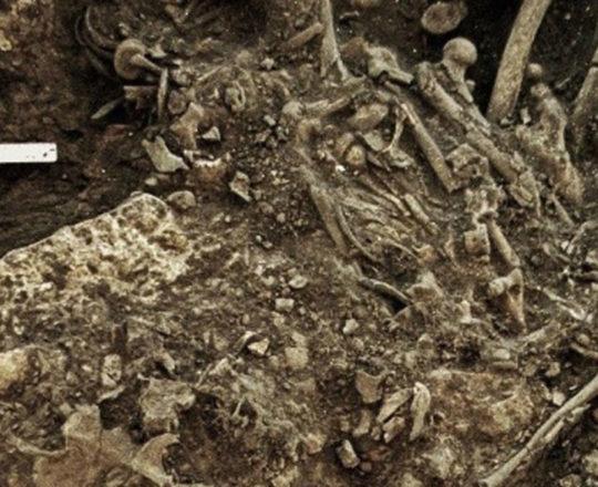 A epidemia de peste que quase dizimou a humanidade 5 mil anos atrás