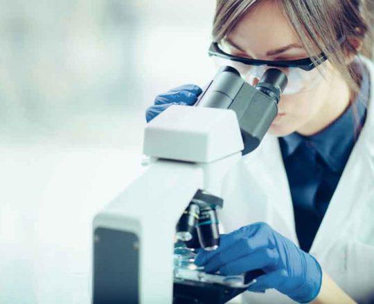 Estudo revela proteína que pode ajudar a tratar elefantíase e leishmaniose
